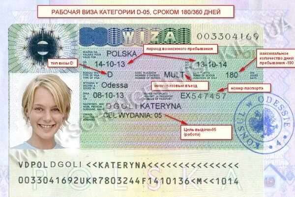 Что такое рабочая виза