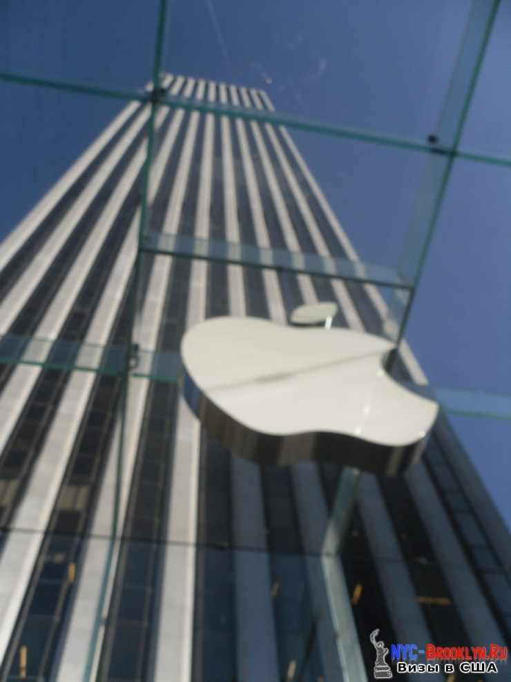 9. Магазин Apple Store в Нью-Йорке, на 5th Avenue - NYC-Brooklyn