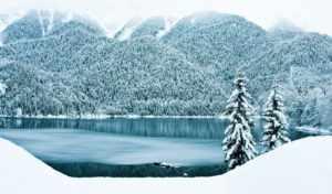 отдых в Абхазии зимой