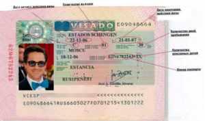 Тип визы С (разрешение на пребывае=ние в стране 30-1825 дней ), подразделяется на подвиды: С1 (30 дней), С2(три месяца), С3 (3мес. до 1 года), С4 (на пять лет).