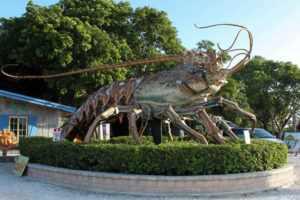 центр спортивного рыболовства